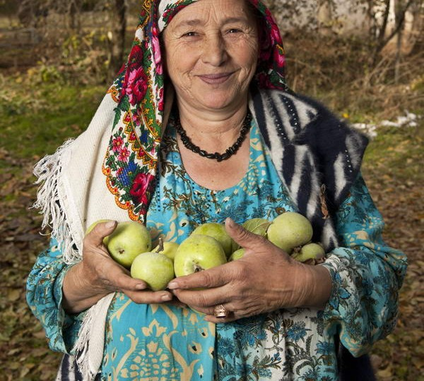 Apples from the wild forest of Tajikistan