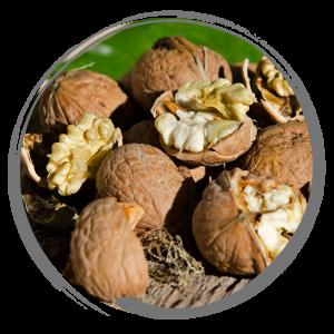 Walnut remedy