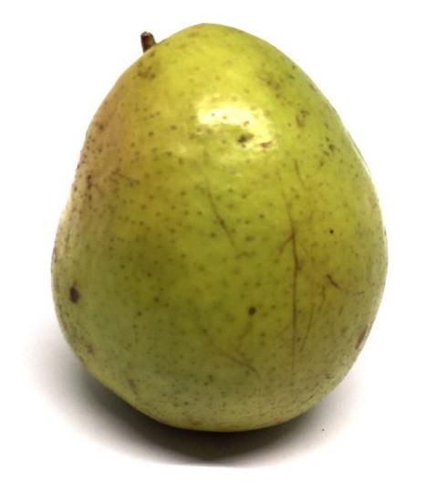 Pear of Gharm